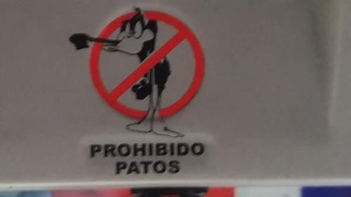 """Sign posted on bus, """"ducks prohibited"""""""