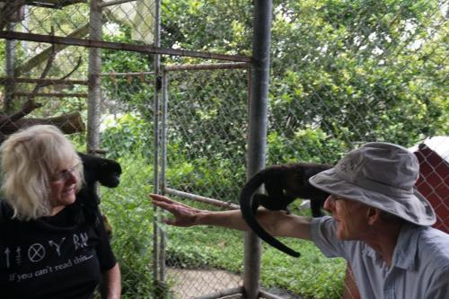 Baby howler monkey deciding to move from Raquel's neck across to Dan. I just held out my hand and it scooted across.