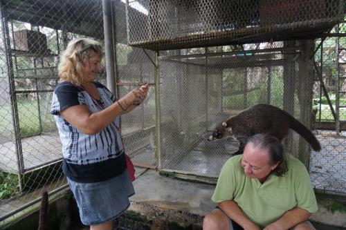 Our friends Lecia and Jim with a white-nosed coati.