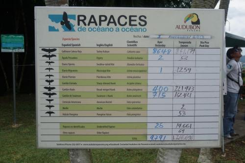 Bird watching info for the day at Ancon Hill