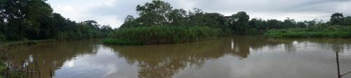 Area where we got the panga to our sailboat. Very much a jungle.