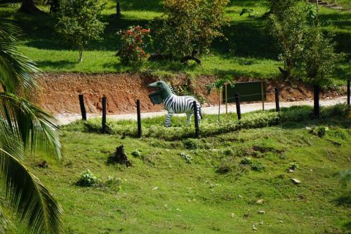 Zebra something model