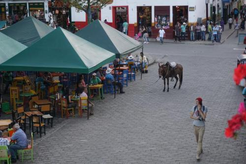 Horse on main street by plaza