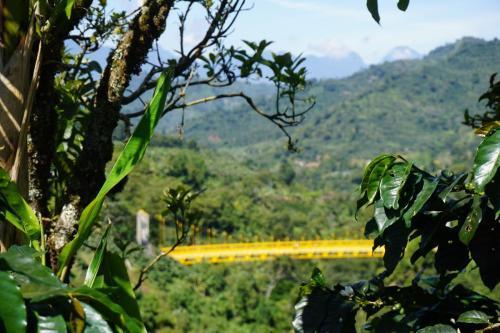 View of the bridge from la garrucha