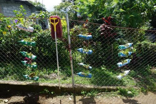 Some type of science project where plastic bottles are recycled and used as planters