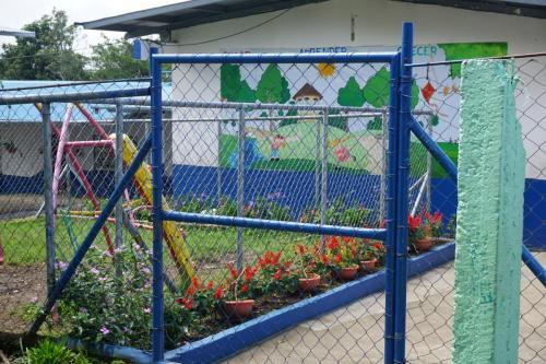 Despite the limited space, there are flowering plants to brighten up the school