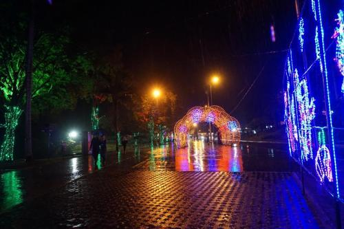 Manizales Holiday Lights
