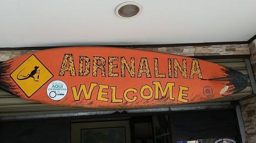 Adreneline Welcome-note lizard rowing