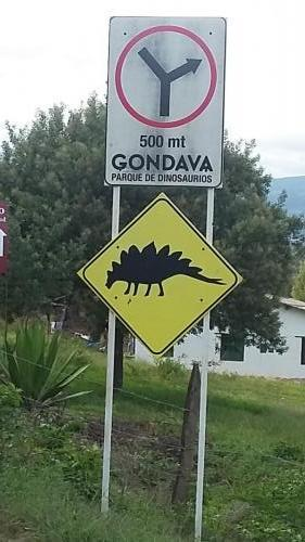 Another dinosaur sign
