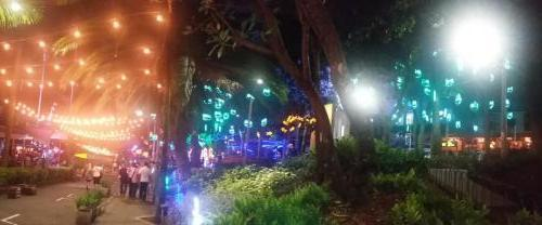 Lots of lights in trees in small park