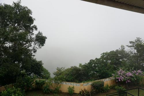 View is almost all blocked by low clouds