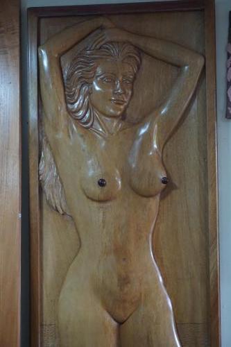 Not my style but beautiful artwork door