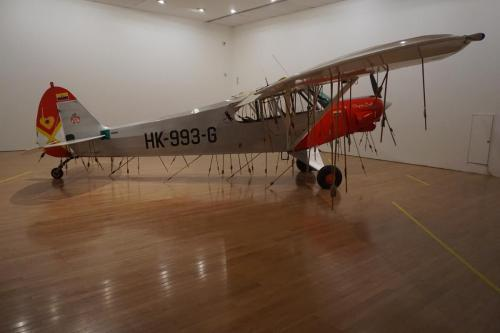 Airplane in museum with arrows in it