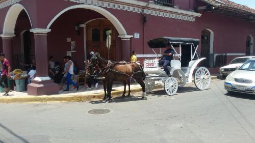 Getting Around Granada