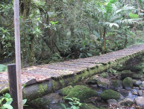 Footbridge with bottle caps from the side
