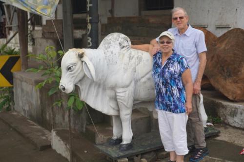 Lindie and Dan with Brahma