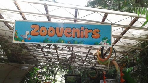 Zoovenirs