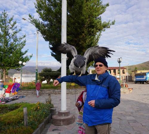 Dan and hawk