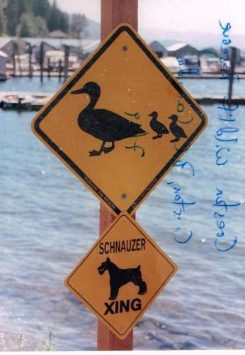 Garfiled Bay Lake Pend Oreilee Sandpoint ID-